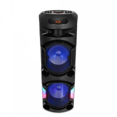 High Power Party Speaker PT91201