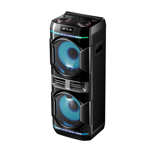 "Dual 10"" Party Speaker PT91001"
