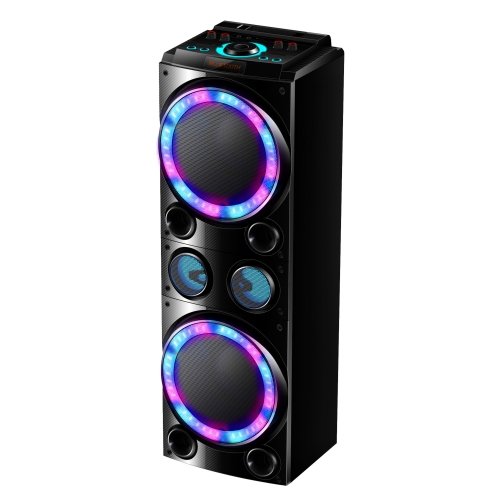"Dual 10"" Party Speaker PT91002"