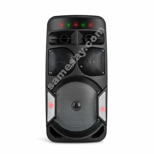 DJ Party Speaker PT1203